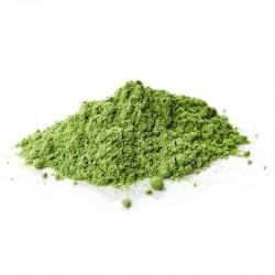 Chlorella - proszek 250 g