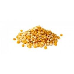 Soczysty popcorn - suszone ziarno kukurydzy 0,5 kg